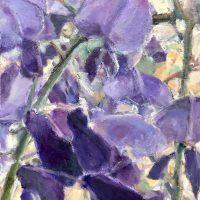 Spring Wisteris by Sandra Rubin