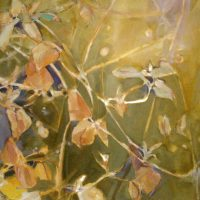 Leaves and Shadows by Sandra Rubin